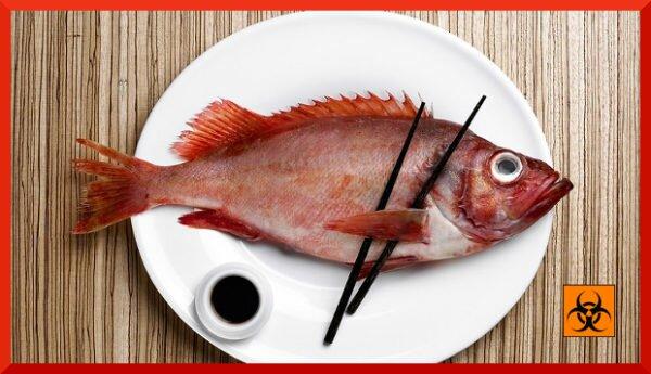 Рыба: опасность отравления