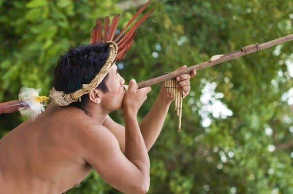 Яд кураре - применение индейцами